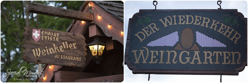 Southern Wedding Portraits, Southern Weddings, Winery Wedding Portraits, Weiderkehr Wine Village_0005