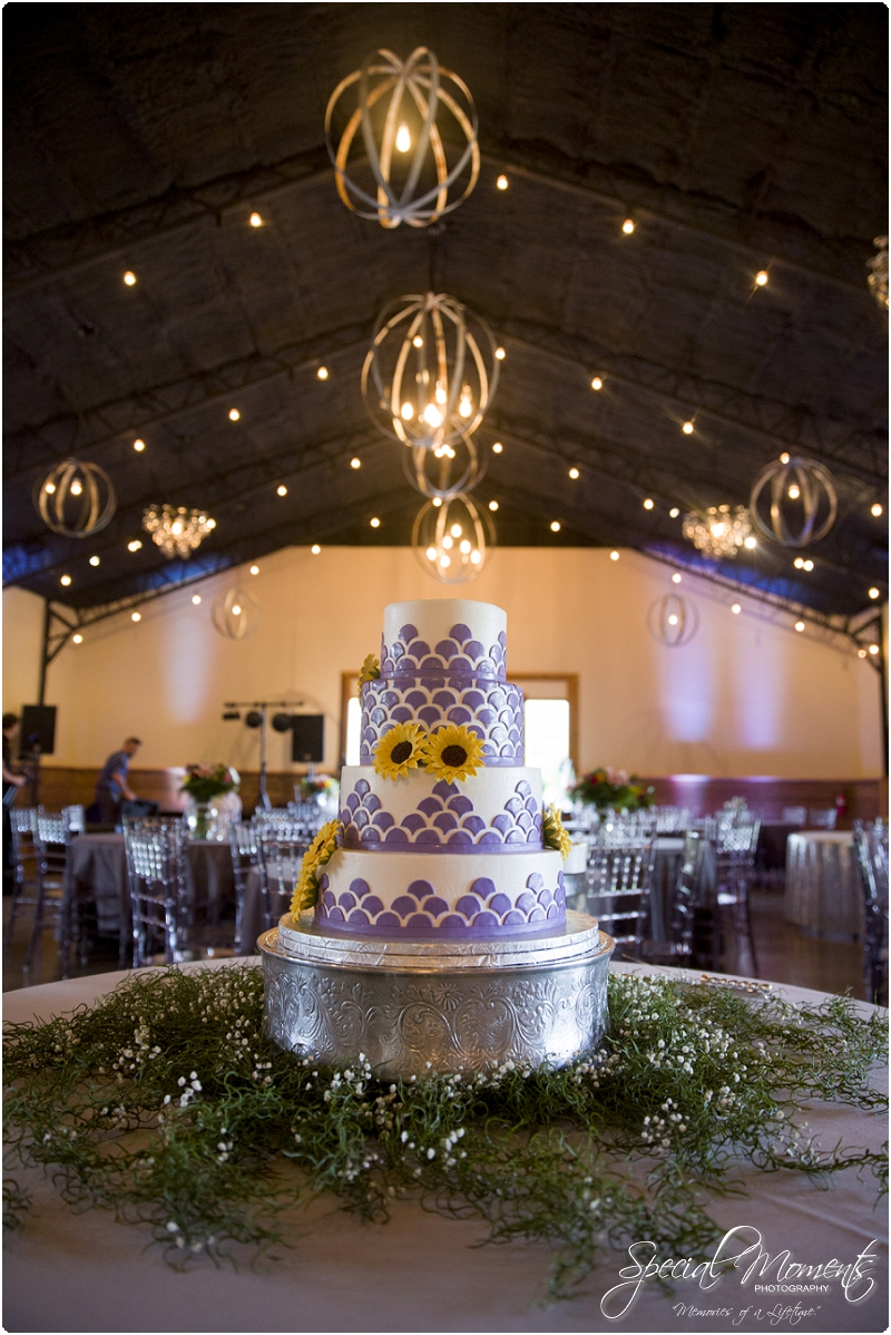 fayetteville arkansas wedding photographer, southern weddings, sassafrass springs vineyard wedding photographer_0033