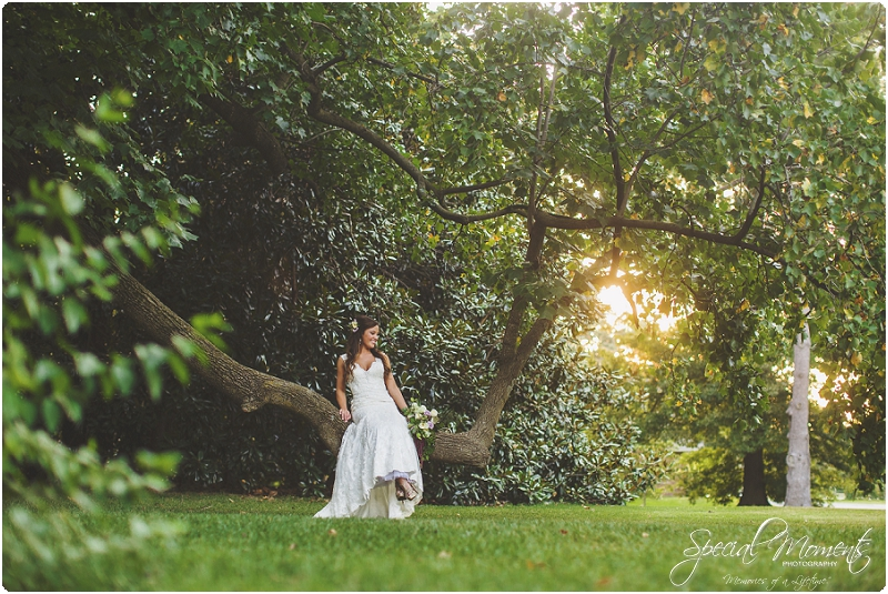southern bridal pictures, amazing bridal pictures, arkansas wedding photographer_0015