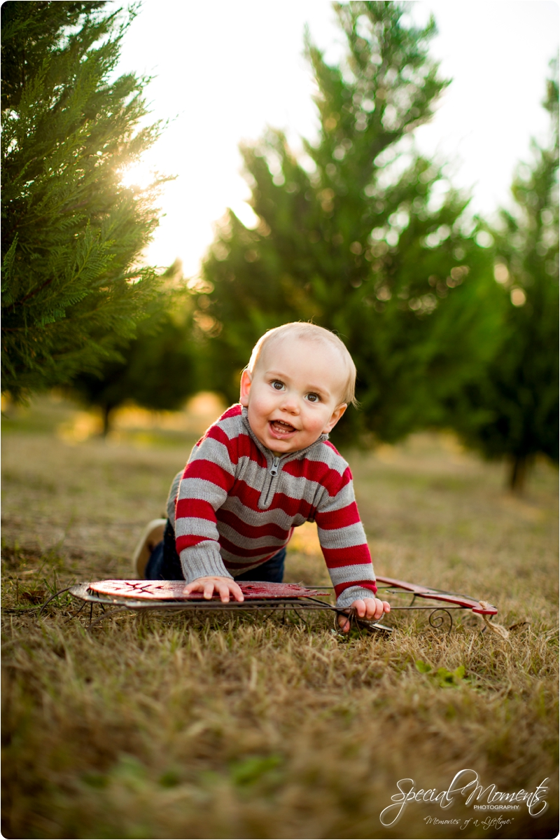 fort smith arkansas photographer, christmas tree farm pictures, christmas pictures_0187