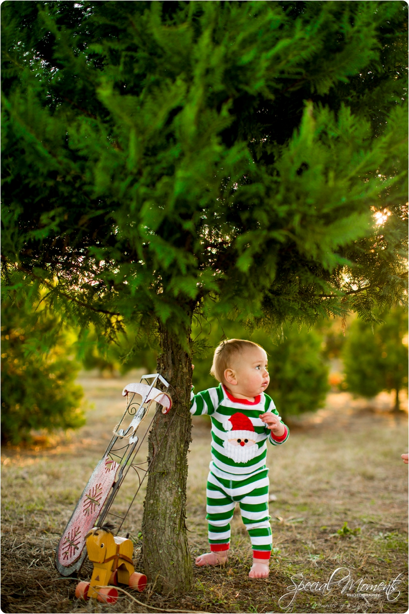 fort smith arkansas photographer, christmas tree farm pictures, christmas pictures_0189